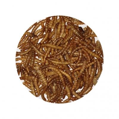 Mehlwürmer 200 g