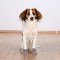 TRIXIE Hundesocken